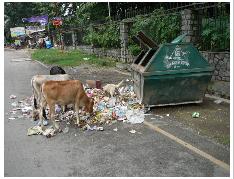 Exzessiver Konsum und Nachhaltigkeit in Neu-Delhi:  Elektroschrott und andere Müllprobleme @ Volkshochschule Hannover